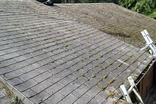 window-butler-ottawa-residential-home-roof-cleaning-washing-2-before